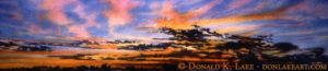Prairie Sky #18