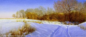 Shadows Upon Snow Fall River