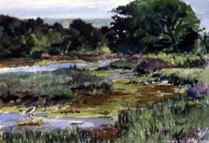 Shalfleet Estuary