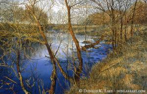 West Branch Winter Afternoon